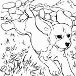 Printable Dog Coloring Pages Inspirational Free Printable Dachshund Coloring Pages Free Coloring Pages