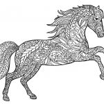 Printable Horse Coloring Pages Awesome Horse Adult Coloring Pages at Getdrawings