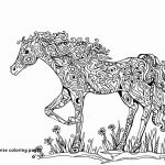 Printable Horse Coloring Pages Best Of 15 Free Printable Realistic Horse Coloring Pages Aias