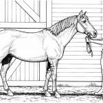 Printable Horse Coloring Pages Best Of Unique Free Horse Coloring Page 2019