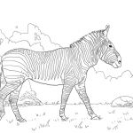 Printable Horse Coloring Pages New Coloring Coloring Printable Horse Beautiful Mustang Page