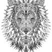 Printable Lion Coloring Pages Creative Russellbiomass Page 79 astonishing Lion Coloring Pages Space