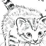 Puppies and Kittens Coloring Pages Amazing Puppy and Kitten Coloring Pages New Best Od Dog Coloring Pages Free