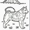 Puppy Pictures to Color and Print Creative Pitbull Coloring Pages Best Real Puppy Coloring Pages Fresh