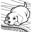 Puppy Pictures to Color and Print Elegant 7 Best Puppy Coloring Pages Images In 2013
