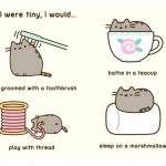 Pusheen the Cat Pictures Amazing Best Cakes Birthdays and Free Timeline Templates for