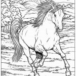 Race Horse Coloring Pages Best Year Horse Coloring Page Inspirational Beautiful Racing Horse
