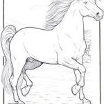 Race Horse Coloring Pages Inspired 1406 Best Horse Coloring Pages Images In 2017