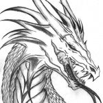 Realistic Dragon Coloring Page Pretty Realistic Nature Coloring Pages Awesome Free Printable Dragon
