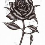 Rose Coloring Pages Exclusive Pain Drawing Easy to Draw Instruments Home Coloring Pages Best