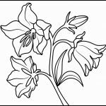 Rose Coloring Pages Inspired Printable Coloring Page Flower Bouquet Beautiful Rose Bouquet