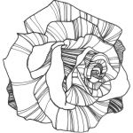 Rose Flower Coloring Pages Best Nicole Illustration Flower Power Rose Coloring Page Colouring