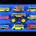 School Bus Pictures to Color Inspiration Videos Matching School Buses for Kids