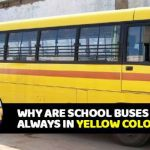 School Bus Pictures to Color Inspiration why are School Buses Always Painted with Yellow Colour This is the