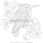 Sexy Coloring Pages Awesome Philippine National Symbols Coloring Pages – Ourwayofpassion