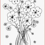 Shopkins Coloring Book Amazing Coloring Book Pages Paysage Free Coloring Pages Awesome Colouring