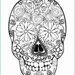 Skull Coloring Pages to Print Brilliant Coloring Page astonishing Ideas Free Printable Sugar Skull