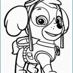 Skye Paw Patrol Printable Best Carlosolmomartin 64 Staggering Fire Truck Coloring Page 37