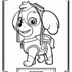 Skye Paw Patrol Printable Inspired Free Paw Patrol Coloring Pages Awesome Puppy Colouring Sheets New