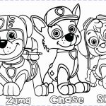 Skye Paw Patrol Printable Marvelous Paw Patrol Rocky Play Coloring Pages Printable Throughout Free