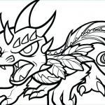 Skylander Coloring Pages to Print Excellent Skylander Printable Coloring Pages – Best Coloring Pages 2018