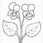 Smile Coloring Pages Excellent Fresh Easter Flowers Coloring Pages – Ucandate