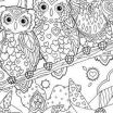 Snowy Owl Printable Awesome Luxury Owl Eyes Coloring Pages – Tintuc247