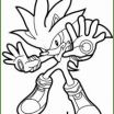 Sonic Coloring Games Elegant 3 sonic to Color