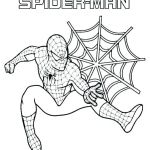 Spiderman Coloring Pages Online Inspiration Spiderman Coloring Page to Print Coloring Pages Line