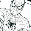 Spiderman Coloring Pages Pdf Creative Coloring Pages Line Book as Well Batman Marvel Spiderman Pdf