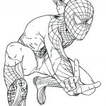 Spiderman Coloring Pages Pdf Inspiration Spiderman Coloring Page to Print Coloring Pages Line