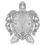 Tattoo Design Coloring Pages Inspiring Sea Turtle Coloring Page Stock Vector Illustration Of Book
