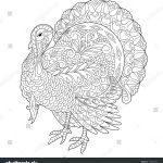 Thanksgiving Coloring Images Brilliant Coloring Page Of Turkey for Thanksgiving Day Greeting Card Freehand
