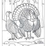 Thanksgiving Coloring Images Pretty Thanksgiving Coloring Pages for Boys Luxury Splatoon Coloring Pages