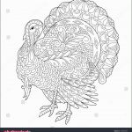Thanksgiving Coloring Sheets Inspired 20 Fresh Buffalo Coloring Pages Printable androsshipping