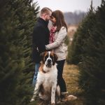 Tinkerbell Christmas Trees Inspired Christmas Photo Shoot Ideas for Creative People