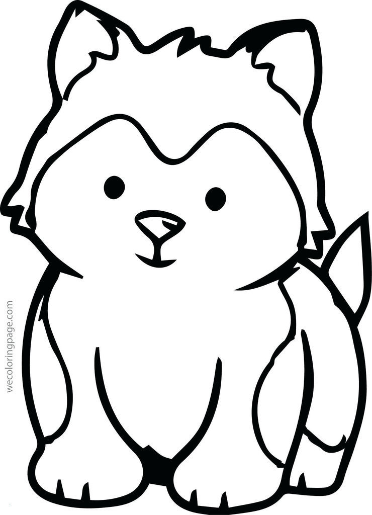 Train Coloring Pages Free Elegant Inspirational Information About Animals – Endangered Species and