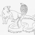 Unicorn Coloring Pages for Adults Exclusive Coloring Book Info Coloring Pages Best Color Book Pages Awesome