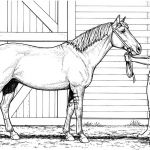 Unicorns Color Pages Awesome Inspirational Beautiful Horse Coloring Pages