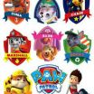 What are the Names Of the Paw Patrol Dogs Brilliant 135 Best Skye Paw Patrol Cake Images In 2018