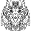 Wolf Adult Coloring Awesome Wolf Coloring Pages