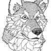 Wolf Coloring Books Marvelous Wolf Coloring Pages Unique Wolf Coloring Book Inspirational Wolf