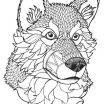 Wolf Coloring Pages for Adults Beautiful 17 Best Coloring Pages Wolves