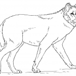 Wolf Coloring Pages Pretty Wolf Coloring Pages Printable 27w Inspirational Beautiful Fresh