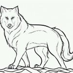 Wolf Coloring Pages Realistic Awesome Wolf Coloring Pages