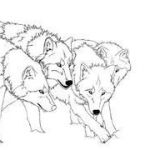 Wolf Coloring Pages Realistic Best Of 11 Best Wolf Drawing Images In 2017