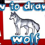 Wolf Coloring Pages Realistic Best Of How to Draw A Realistic Wolf