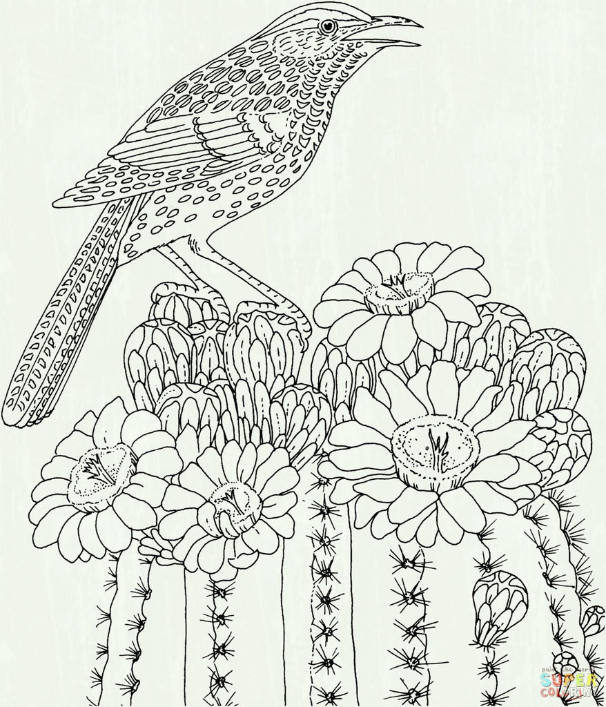 Wwe Coloring Picture Fresh Inspirational Hummingbird Coloring Pages Fvgiment