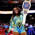 Wwe Diva Belt Best My 6 Month Report the Women S Division