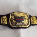 Wwe Divas Belt for Kids Best Action Figure Imagery toy Reviews May 2016